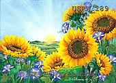 Randy, STILL LIFE STILLLEBEN, NATURALEZA MORTA, paintings+++++Sunflowers-Rising-Sun,USRW189,#i#
