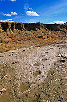 Fossil Dinosaur trackway site in creek bed, below Black Mesa, north of Kenton, Oklahoma, AGPix_0033.