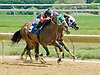 Indy Heir  winning  at Delware Park on 7/30/12