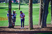 Rickie Fowler (USA) analyzes his next shot from the trees on 12 during round 1 of the Honda Classic, PGA National, Palm Beach Gardens, West Palm Beach, Florida, USA. 2/23/2017.<br /> Picture: Golffile | Ken Murray<br /> <br /> <br /> All photo usage must carry mandatory copyright credit (&copy; Golffile | Ken Murray)