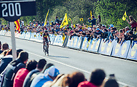 Philippe Gilbert (BEL/Quick Step floors) approaches the finish line and realises he is actually gonna win De Ronde<br /> <br /> 101th Ronde Van Vlaanderen 2017 (1.UWT)<br /> 1day race: Antwerp › Oudenaarde - BEL (260km)