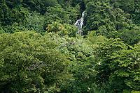 POHNPEI,MICRONESIA WATERFALL