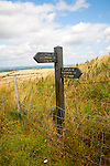 Permissive footpath sign on the Ridgeway long distance footpath near Liddington castle, Wiltshire, England