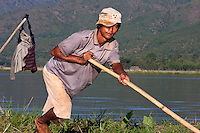 Myanmar, Burma.  Inle Lake, Shan State.  Burmese Men Using Long Poles to Relocate a Floating Island for Agricultural Purposes.  These floating islands of soil can be bought and sold.