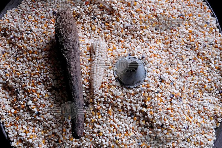 Stored maize.