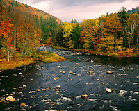 Sacandaga River near Windfall; Adirondack and Preserve, NY