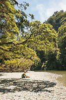 Woman on beach of Smoothwater River in native podocarp forest near Jackson Bay, South Westland, West Coast, World Heritage Area, South Island, New Zealand