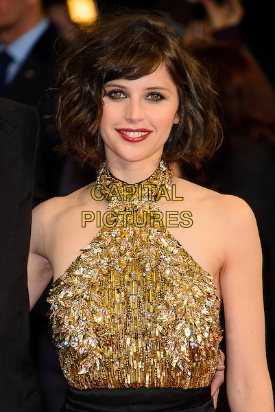 LONDON, ENGLAND - JANUARY 27: Felicity Jones attends at the 'Invisible Woman' UK film premiere at The Odeon Kensington on January 27, 2014 in London, England. <br /> CAP/CJ<br /> &copy;Chris Joseph/Capital Pictures