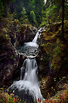 Beautiful cascade waterfall nature scenery at Little Qualicum Falls Provincial Park, on Little Qualicum River, Vancouver Island, BC, Canada