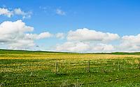 Gorgeous view of the great plains on the Blackfeet Reservation in Montana. Too bad we killed all the buffalo. It would be even more beautiful with them grazing out there.