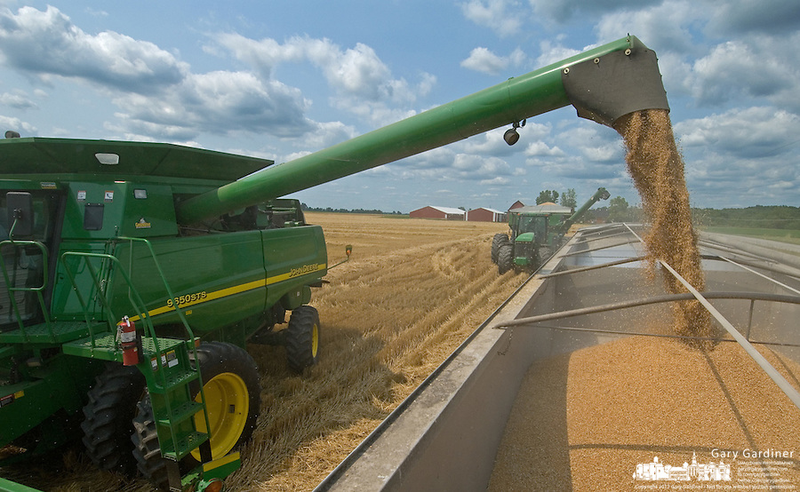 Winter wheat is harvested in a field near Delaware, Ohio, Friday, July 7, 2006.<br />