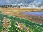 Yellowstone National Park, WY:<br /> Green Cyanidium algai in the warm thermal run-off waters of the  Porcelain Basin in Norris Geyser Basin