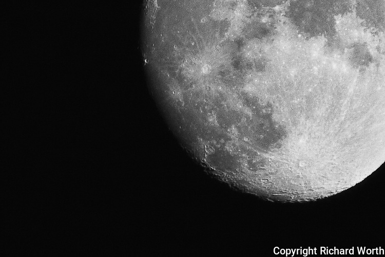 On a clear summer night, the gibbous moon, photographed from a California backyard.