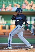 David Sanchez (16) of the Missoula Osprey bats against the Ogden Raptors at Lindquist Field on July 12, 2018 in Ogden, Utah. Missoula defeated Ogden 11-4. (Stephen Smith/Four Seam Images)
