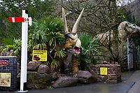 "Pictured: A general view of Dan Yr Ogof, The National Showcaves Centre for Wales, Abercraf, Swansea, Wales, UK<br /> A 3/4 of a tonne dinosaur is being auctioned off  in order to raise funds for JDRF, a charity that funds research into finding a cure for people with type I diabetes.<br /> The 15 ft tall (4.6mtrs) fibreglass Allosaurus has been part of the exhibition at Dan Yr Ogof, The National Showcaves Centre for Wales, for some years.<br /> The idea for the auction came from Ashford Price, chairman of the National Show Caves for Wales at Dan yr Ogof, whose son and grandson both live with type 1 diabetes. Ashford said: ""Diabetes is a difficult medical condition even for adults, but for young children it is so much harder.<br /> ""Some young children have six insulin injections every day just to stay alive. Can you imagine the parents' anguish having to put a child through this daily ritual?<br /> The dinosaur measures 24ft long (7.3mtrs) and its 8ft (2.4mtrs) at its widest point <br /> The dinosaur is being auctioned to the highest bidder in order to raise funds for JDRF, a charity that funds research into finding a cure for people with type I diabetes.<br /> To put in a bid email the charity at wales@jdrf.org.uk by the 26th of February."