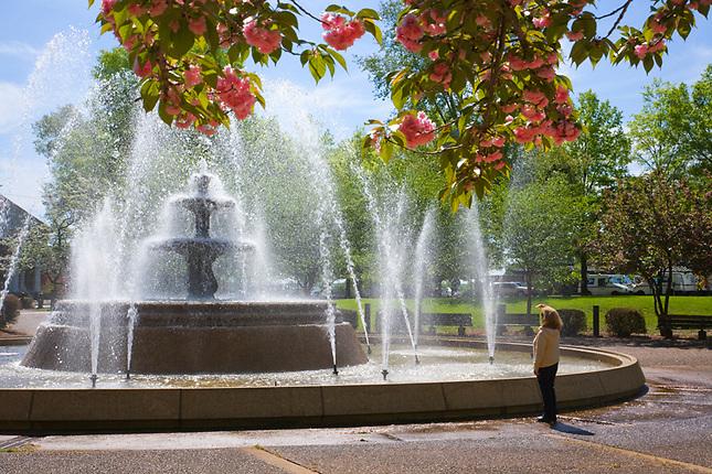 City Park Fountain, Florence, Alabama