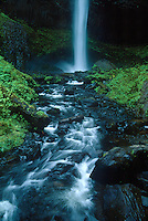 73860004a base of latourell falls and stream in the columbia river gorge natioinal scenic area in northern oregon