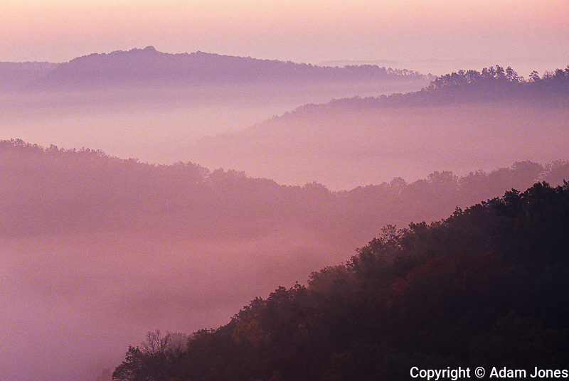 Red River Gorge Geological Area, Daniel Boone National Forest, Kentucky