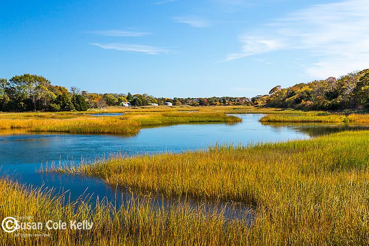 Fall color in Barnstable, Cape Cod, Massachusetts, USA