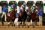 The horses break from the gate during the 132nd running of the Kentucky Derby at Churchill Downs in Louisville, Kentucky on May 6, 2006.  Barbaro (far left), ridden by Edgar Prado, won the race....