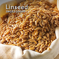 Linseed Pictures | linseed Photos Images & Fotos