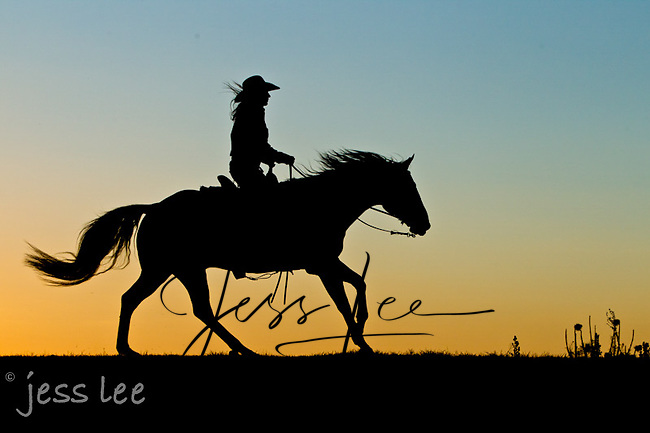 Sunrise ride Cowboys working and playing. Cowboy Cowboy Photo Cowboy, Cowboy and Cowgirl photographs of western ranches working with horses and cattle by western cowboy photographer Jess Lee. Photographing ranches big and small in Wyoming,Montana,Idaho,Oregon,Colorado,Nevada,Arizona,Utah,New Mexico.