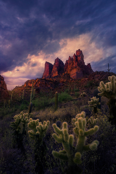 The afterglow of the sunset casts a beautiful red hue on the mountain, with fleeting illumination of cholla cacti in the foreground, contrasted by a stormy sky at sunset.