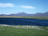 Loch and Machair, South Uist, Hebrides, Scotland, UK