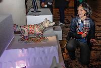 SAO PAULO, SP, 27 SETEMBRO 2012 - ELEICOES 2012 - SONINHA FRANCINE  - A candidata a prefeitura de São Paulo pelo PPS, Soninha Francine, durante visita a exposicao de arte reúne 59 personalidade de arte, moda, designer, jornalismo e produção, contra o uso de peles de animais, organizada pelo Move Institute (Ong de proteção animal). No Conjunto Nacional na noite desta quinta-feira, 27. (FOTO: WILLIAM VOLCOV / BRAZIL PHOTO PRESS).