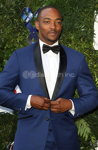 Anthony Mackie at the One For The Boys Charity Ball, Victoria and Albert Museum, London on June 12th 2016<br /> CAP/ROS<br /> &copy;Steve Ross/Capital Pictures /MediaPunch ***NORTH AND SOUTH AMERICAS ONLY***