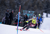 17th March 2018, Àvet Slope, Soldeu, Andorra; FIS Alpine Ski European Cup, Slalom Ladies Finals; 1 DVORNIK Neja from SLO during the Giant Slalom Final