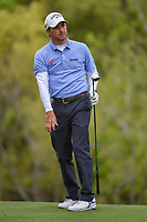 Kevin Kisner (USA) watches his tee shot on 3 during day 5 of the WGC Dell Match Play, at the Austin Country Club, Austin, Texas, USA. 3/31/2019.<br /> Picture: Golffile | Ken Murray<br /> <br /> <br /> All photo usage must carry mandatory copyright credit (&copy; Golffile | Ken Murray)
