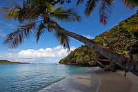 Gibney Beach.Virgin Islands National Park.St John, US Virgin Islands