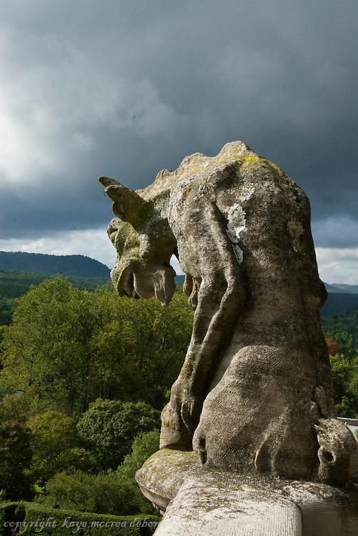 Biltmore Estate Gargoyle