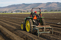 A farmer tilling the soil in preparation to plant strawberries - Watsonville, CA