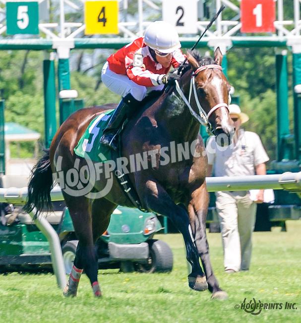 Shamrock Empire winning at Delaware Park on 6/13/16