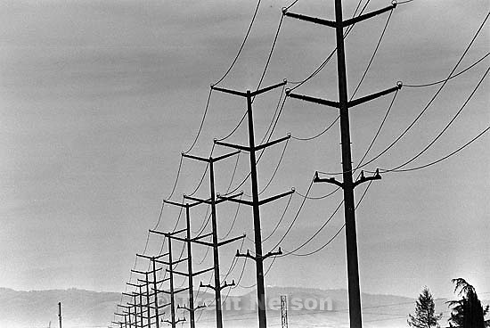 Powerlines along San Ramon Creek<br />