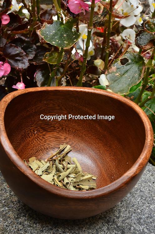 Stock photos of mixed herbs