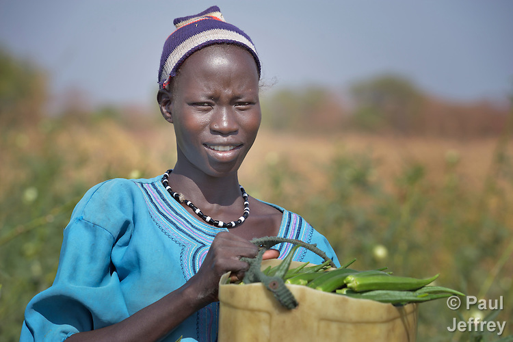 Pap Malek harvests okra in a community garden in Mading Achueng, a village in Abyei, a contested region along the border between Sudan and South Sudan. Under a 2005 peace agreement, the region was supposed to have a referendum to decide which country it would join, but the two countries have yet to agree on who can vote. In 2011, militias aligned with Khartoum drove out most of the Dinka Ngok residents, pushing them across a river into the town of Agok. Yet more than 40,000 Dinka Ngok have since returned with support from Caritas South Sudan, which has drilled wells, built houses, opened clinics and provided seeds and tools for the returnees.