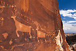 The Procession panel is an ancient Native American petroglyph panel,15-feet long and showing 179 small human-like figures converging on a circle from different directions. The panel also includes bighorn sheep, deer and snakes.  It is thought to represent a migration or a ceremonial procession.  It is located on Comb Ridge in the Bears Ears National Monument in southeastern Utah.