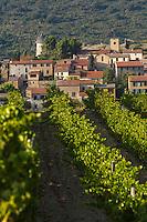 France, Aude (11), Cucugnan,  le village et son vignoble  //France, Aude, Cucugnan, the village and its vineyard