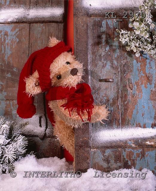 Interlitho, CHRISTMAS ANIMALS, photos+++++,bear,door,snow,KL2970,#xa#