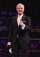 "LAS VEGAS - JUNE 23:  Jimmy Lennon Jr. at Fox Sports ""PBC on Fox Fight Night"" at Mandalay Bay Resort & Casino on June 23, 2019 in Las Vegas, Nevada. (Photo by Scott Kirkland/Fox/PictureGroup)"