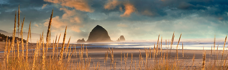 Dune grass with Haystack Rock at Cannon Beach. Oregon