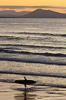 Europe/France/Aquitaine/64/Pyrénées-Atlantiques/Pays-Basque/Biarritz: Surfeurs,  Plage de la Côte des Basques en fond les pyrénées basques espagnoles et le Mont Jaizkibel .