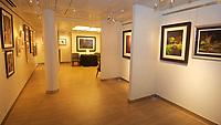 CT- Art Gallery aboard HAL Koningsdam S. Caribbean Cruise, In Port 3 19