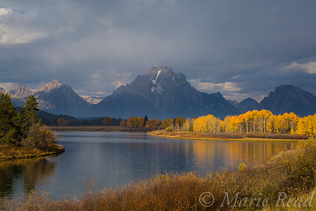 Oxbow Bend with reflected Mt. Moran, autumn, Grand Teton National Park, Wyoming.