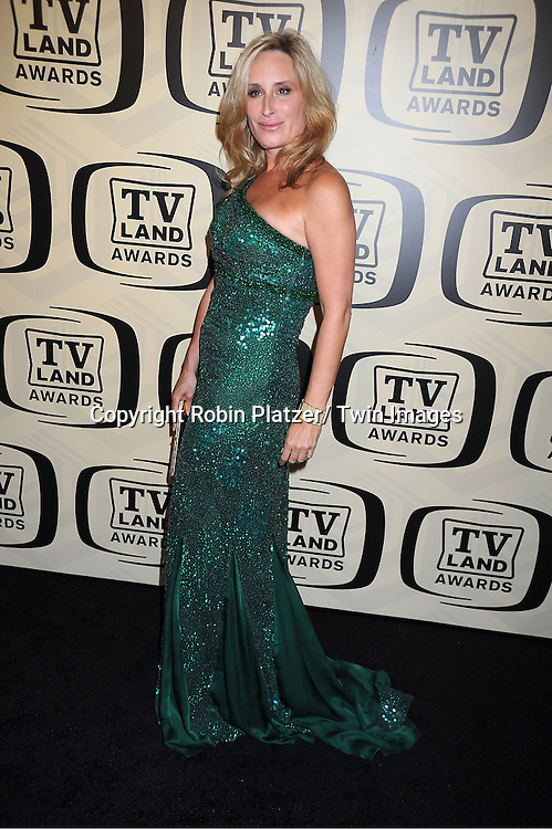 Sonja Morgan arrives at The 10th Annual TV Land Awards on April 14, 2012 at the Lexington Avenue Armory  in New York City.