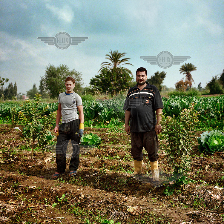 Walid Abdelah and Mohamed Halet stand in one of their fields in the Nile Delta. One of the first political parties that emerged after the fall of the Mubarak regime was the Party of Egyptian Peasants that sought to introduce fairer measures for those living from the land..