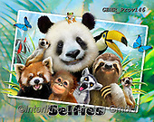 Howard, SELFIES, paintings+++++Zoo Selfie 54x68,GBHRPROV146,#Selfies#, EVERYDAY ,panda,pandas